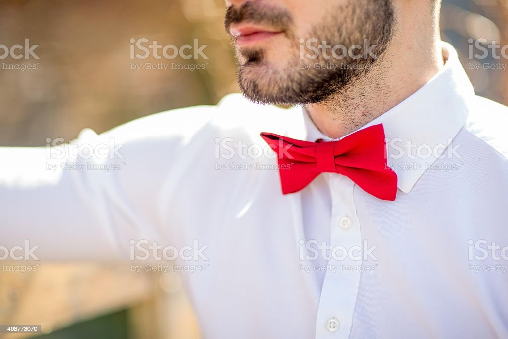 Cut out portrait of man with red bow tie
