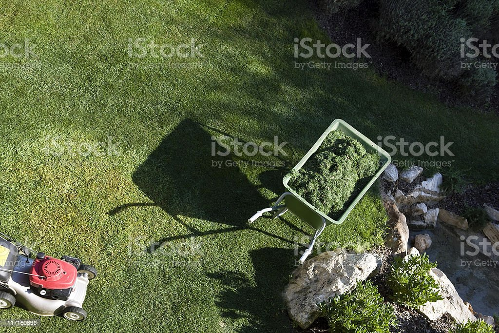 Cut the grass royalty-free stock photo