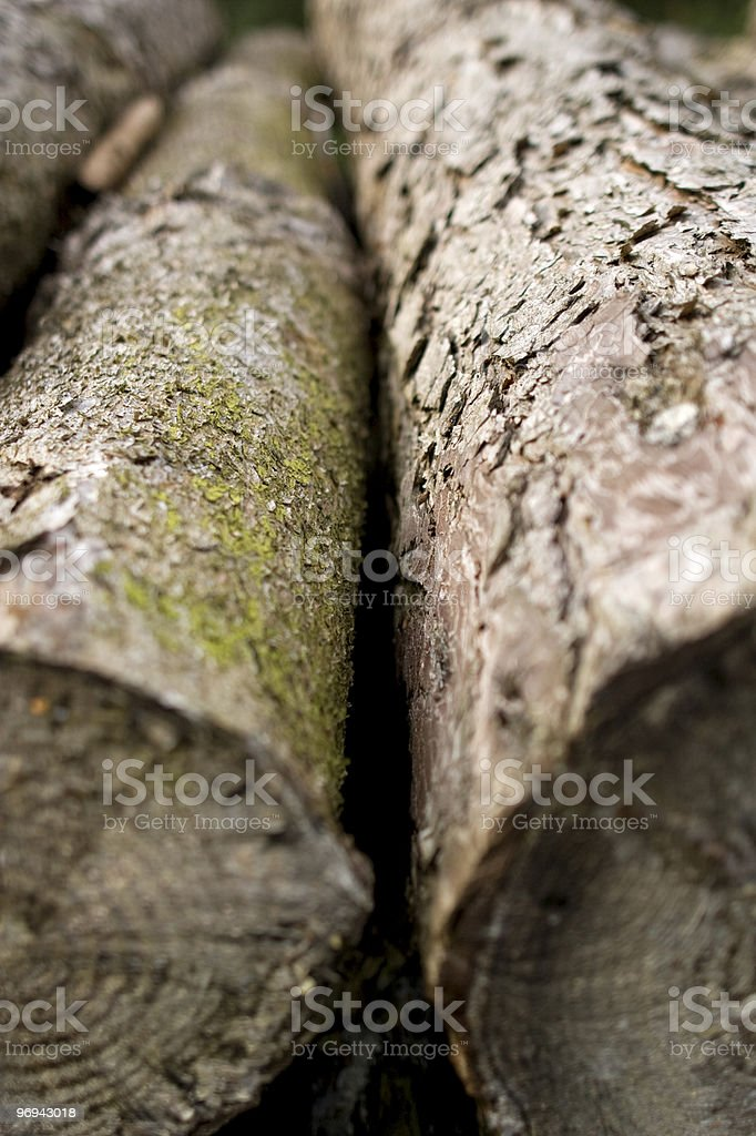 cut tree logs in a pile royalty-free stock photo
