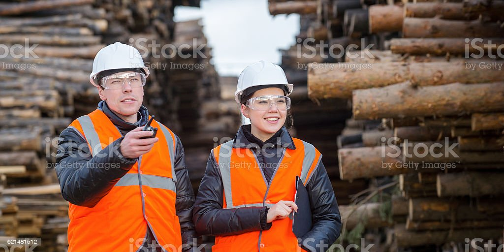 Cut trees and workers stock photo