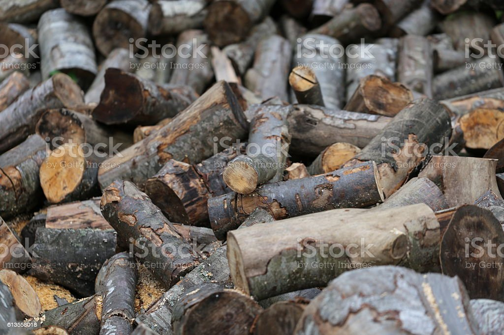 Cut Up Tree Trunks, Firewood, Woodpile. stock photo