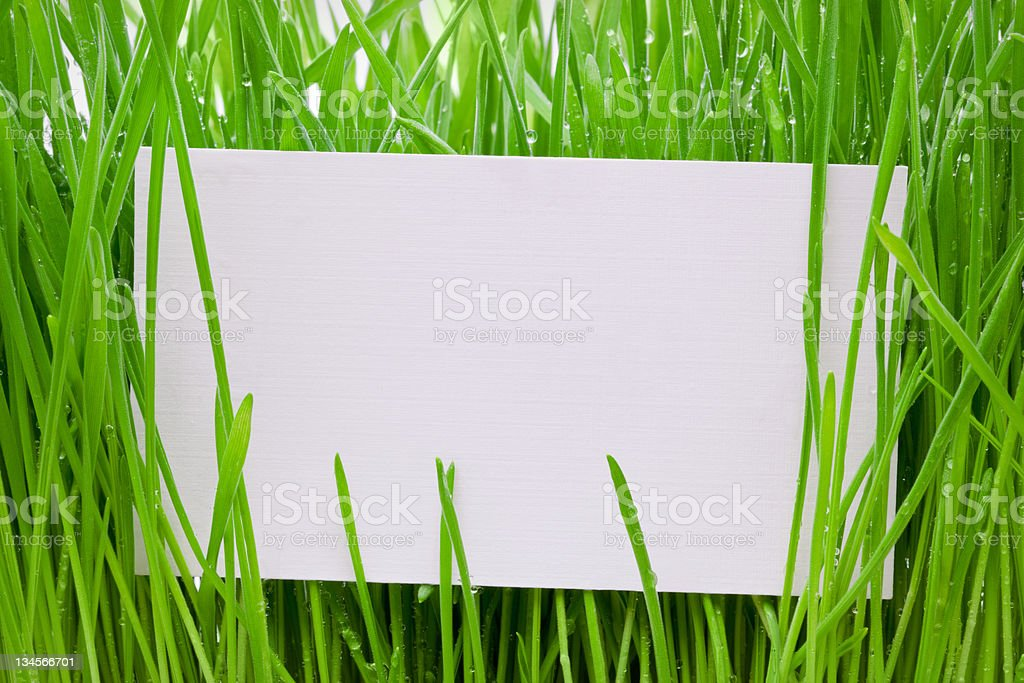 Cut-away to a grass royalty-free stock photo