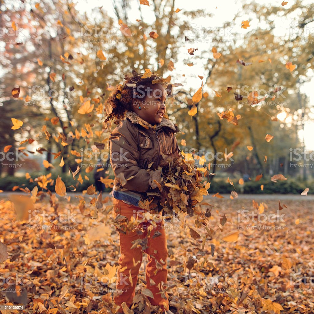 Cute African American little girl playing with autumn leaves. stock photo