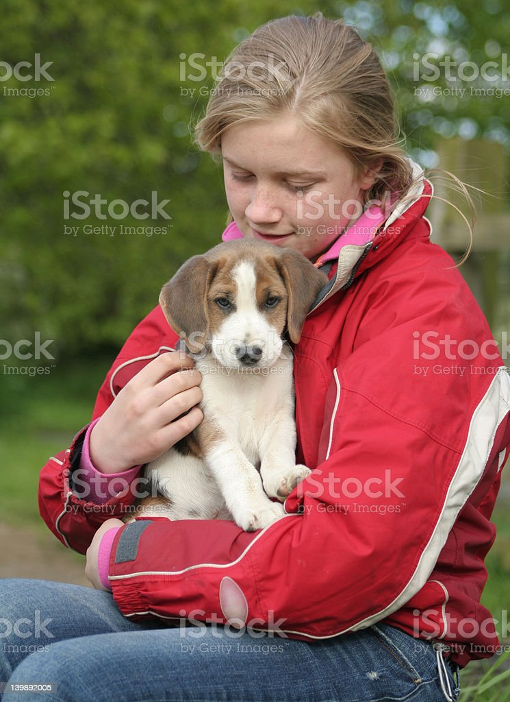 Cute and cuddly royalty-free stock photo