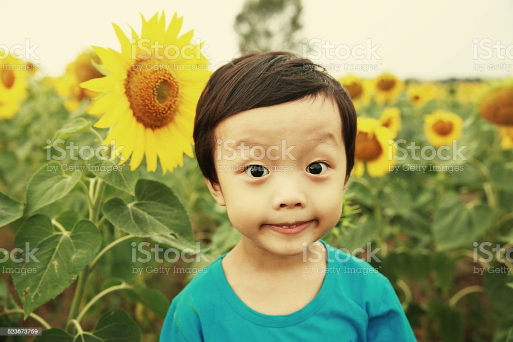 Cute asia children and sunflower stock photo