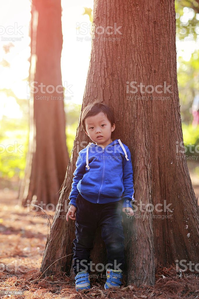 Cute Asian child in the park royalty-free stock photo
