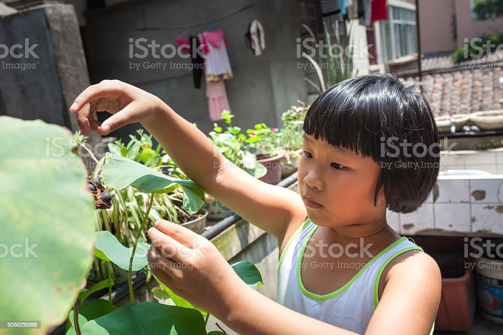 cute asian girl in summer stock photo