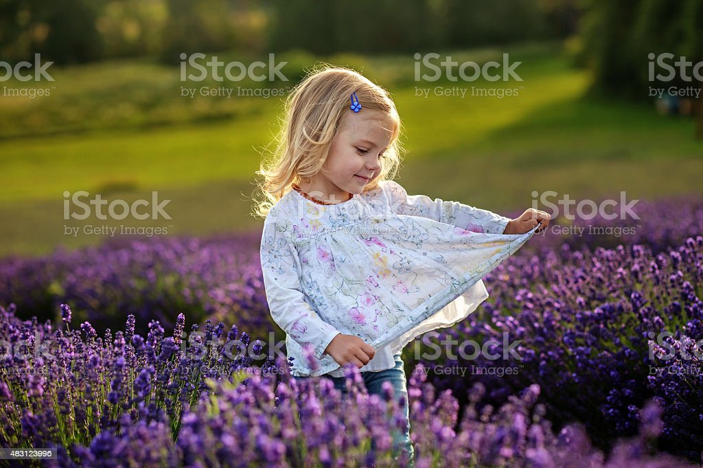 Cute baby girl in a lavender field royalty-free stock photo