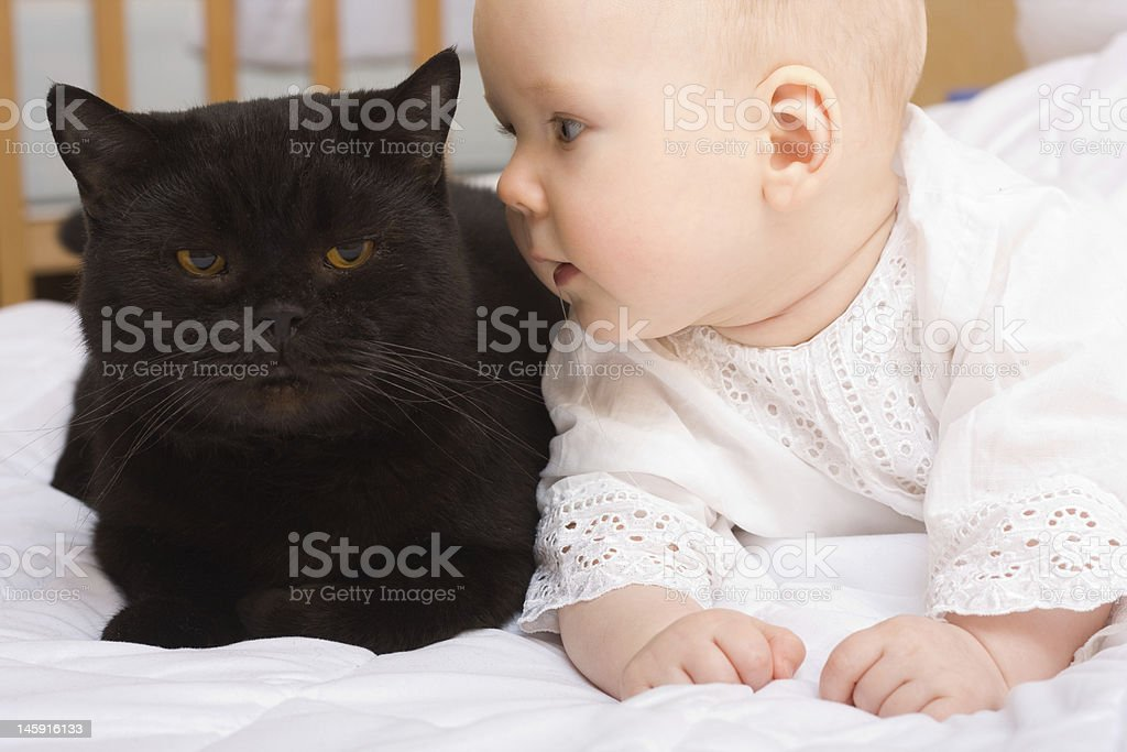 Cute baby with cat royalty-free stock photo