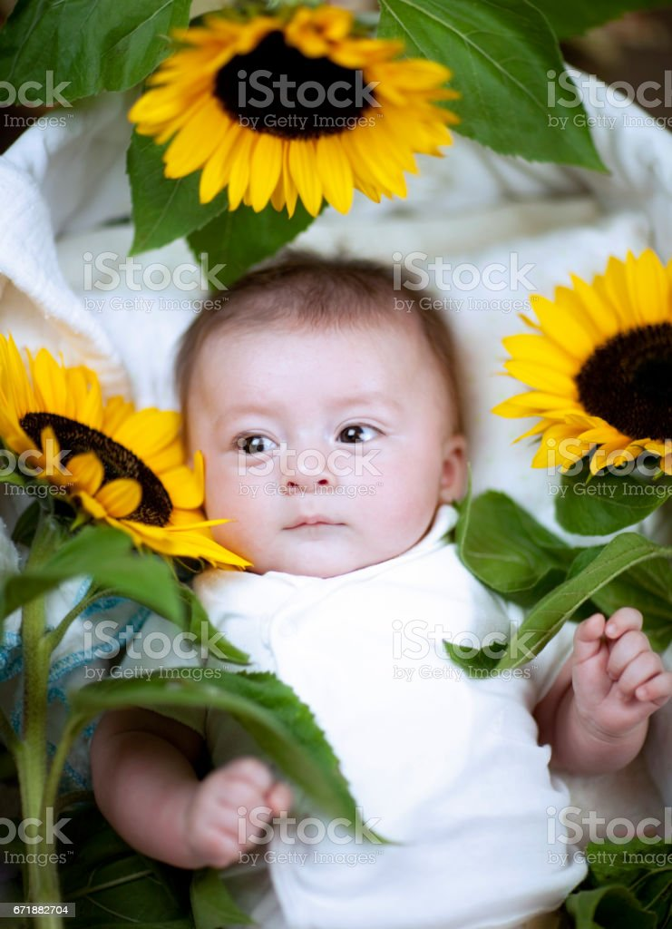 Cute baby with red hair wearing a white shirt laying with yellow and black sunflowers stock photo