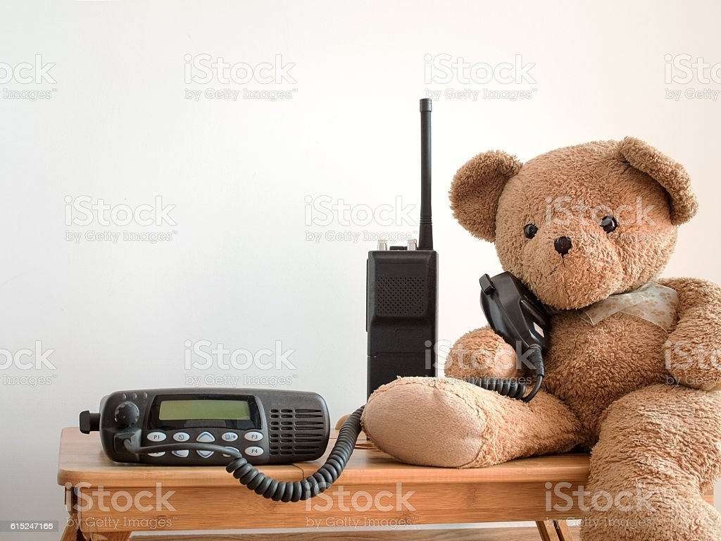 Cute bear holding speaker of black portable amateur radio stock photo