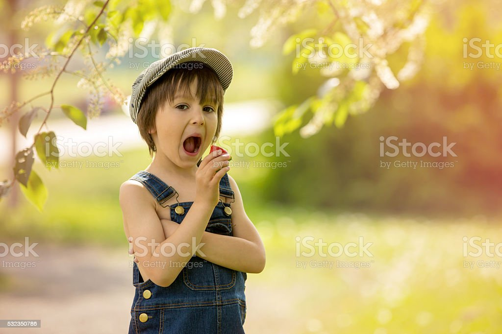 Cute beautiful child, boy, eating strawberries and in the park stock photo