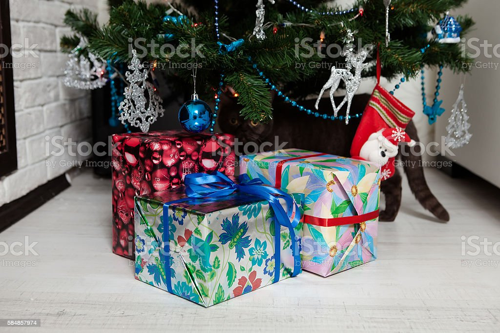 Cute Bengal Cat playing under the Christmas tree stock photo