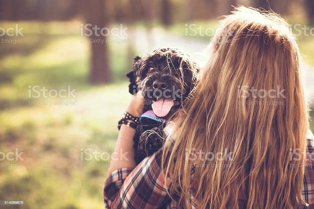 Cute black dog with his owner stock photo