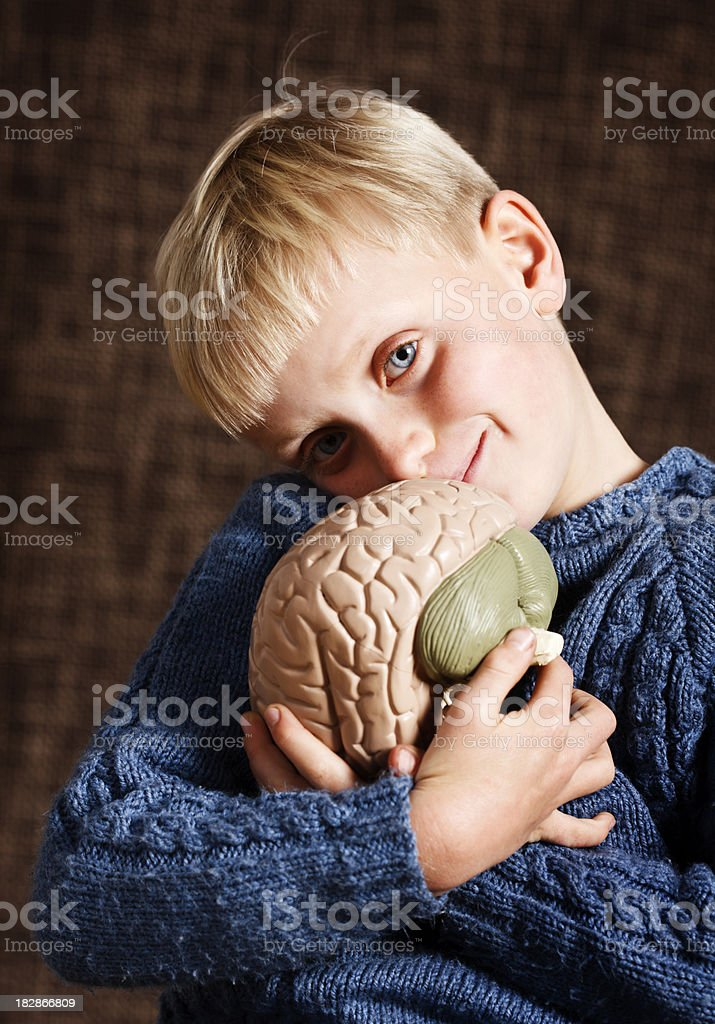 Cute blond boy holds model brain and smiles stock photo