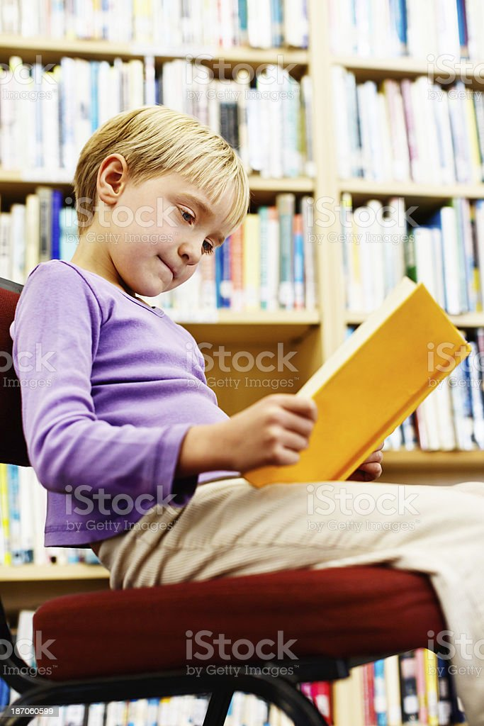 Cute blonde girl concentrates on her reading in library royalty-free stock photo