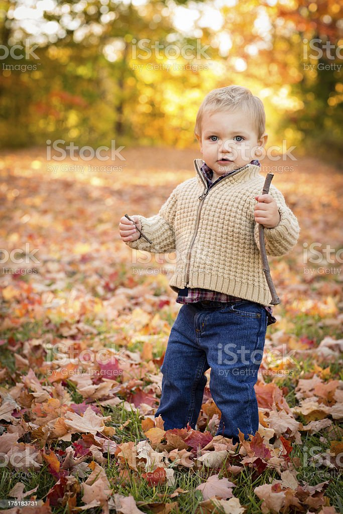 Cute, Blond-Haired Little Boy Standing Outside on Fall Day royalty-free stock photo