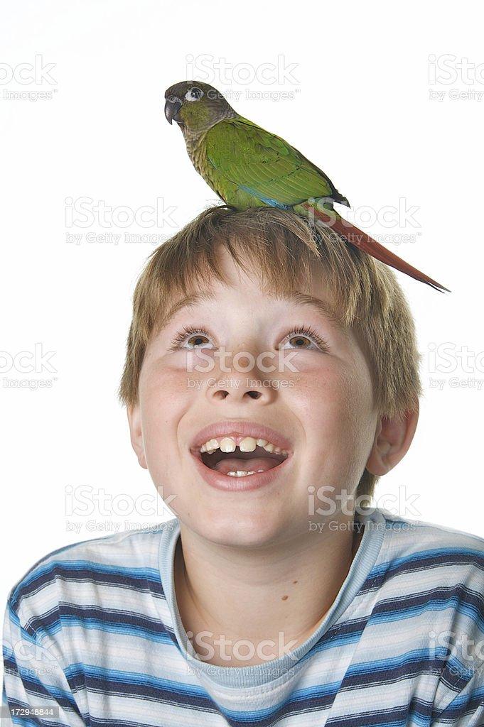 Cute Boy and his Pet Bird stock photo