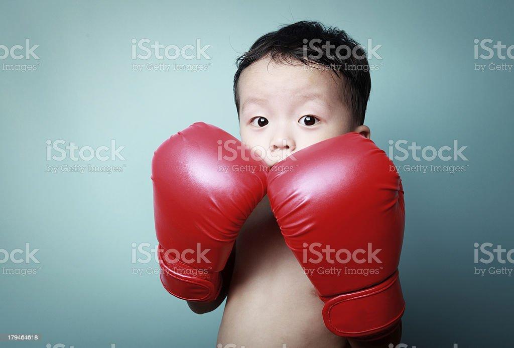 cute boy boxing royalty-free stock photo