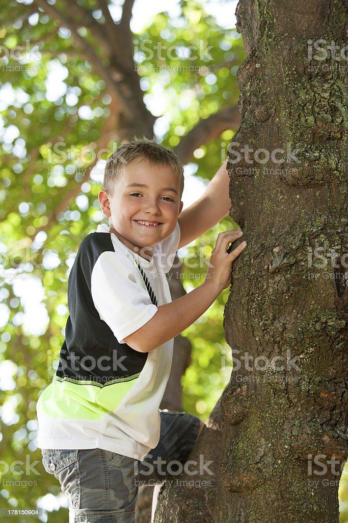 Mignon petit garçon escalade un arbre. photo libre de droits