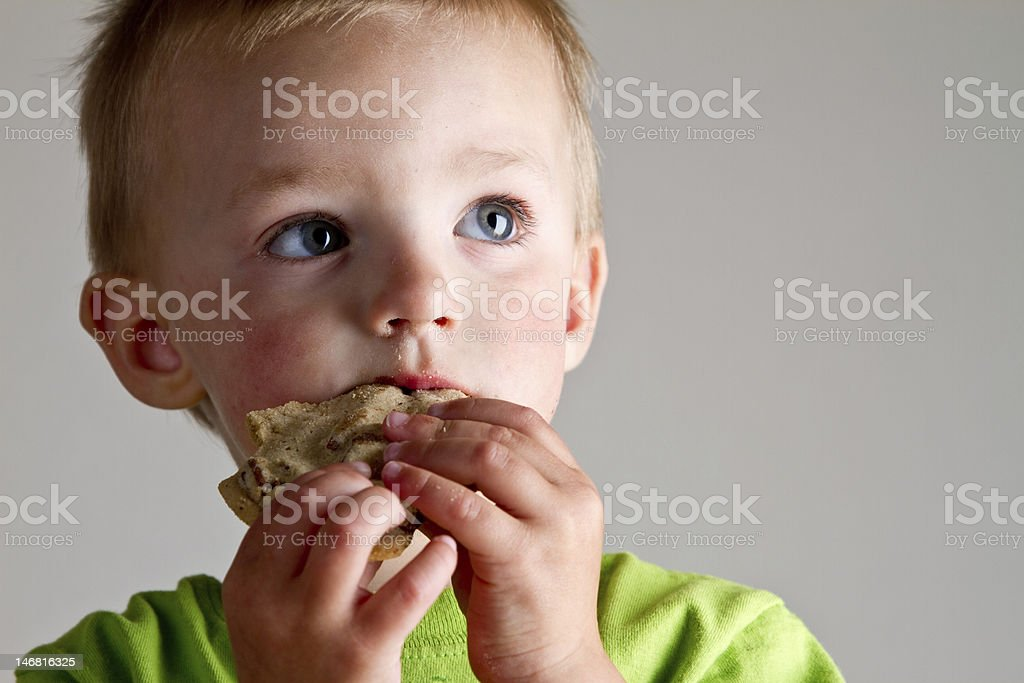 Cute Boy Eating Cookie royalty-free stock photo