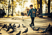 Cute boy feeding pigeons in park