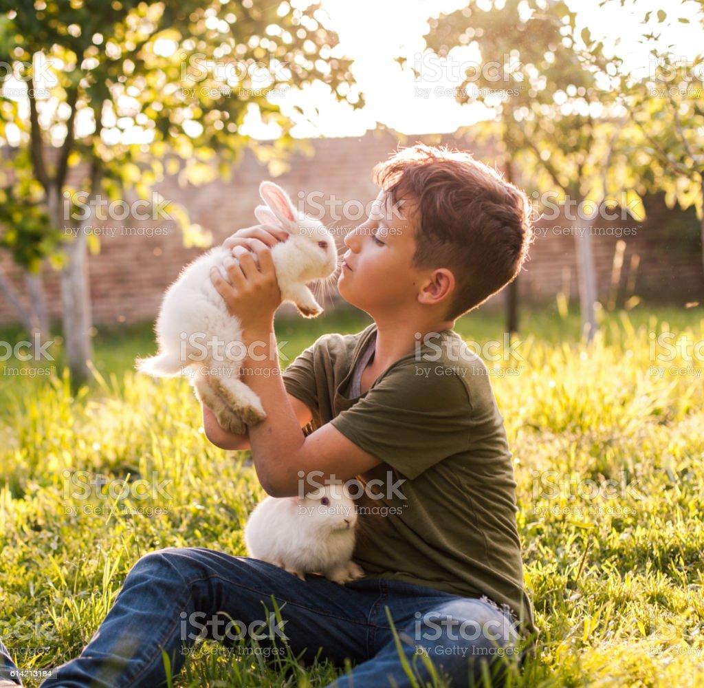 Cute boy holding rabbit stock photo