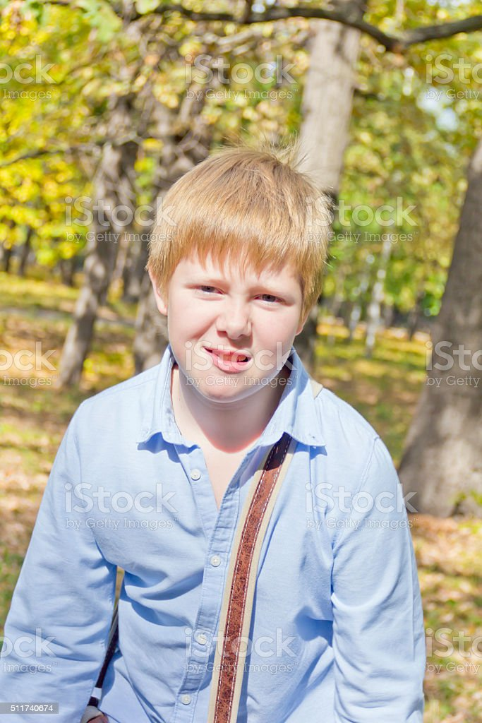 Cute boy in autumn park stock photo