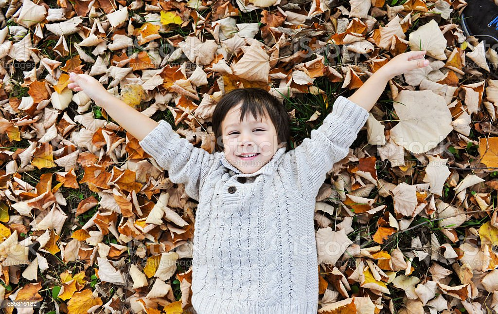 Cute boy laying on the autumn leaves stock photo