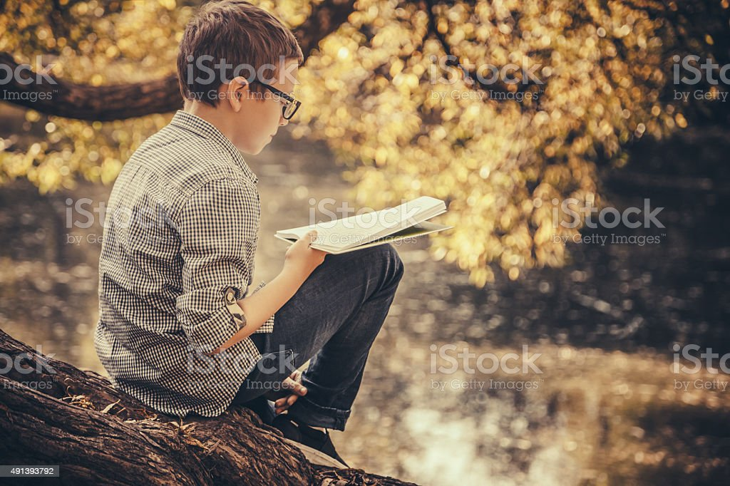 Cute boy reading a book in the park stock photo