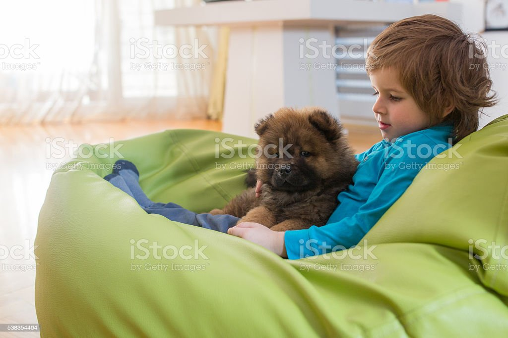 Cute boy relaxing in bean bag with his puppy. stock photo