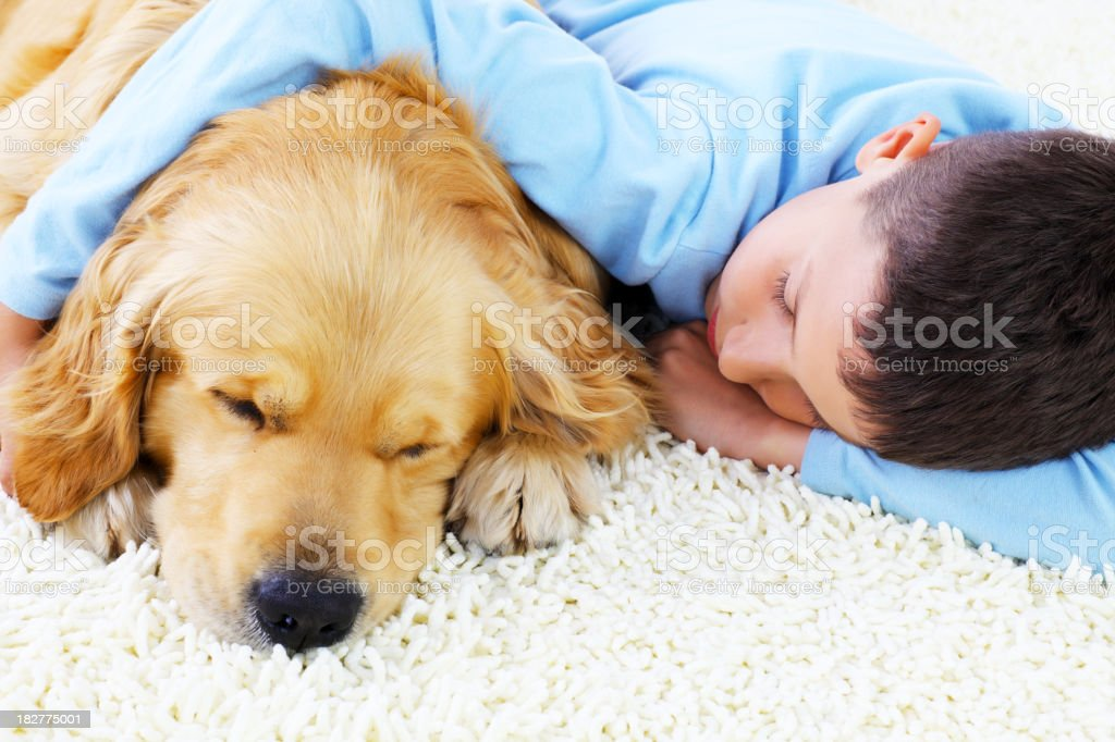 Cute boy sleeping together with his lovely dog. stock photo