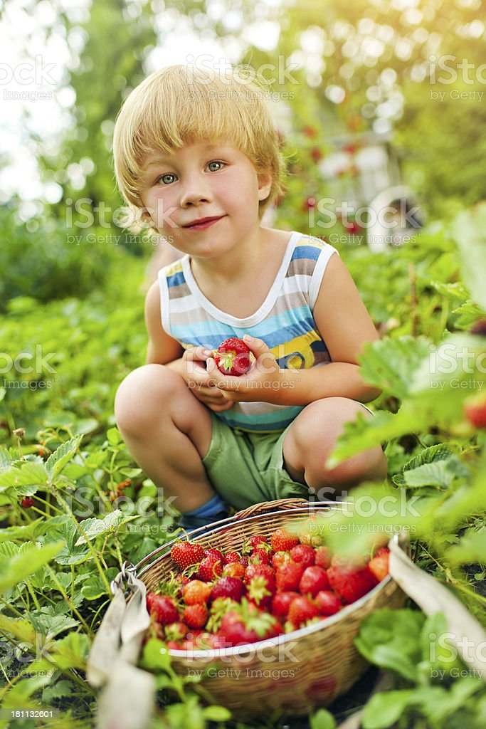 Cute boy with strawberry royalty-free stock photo