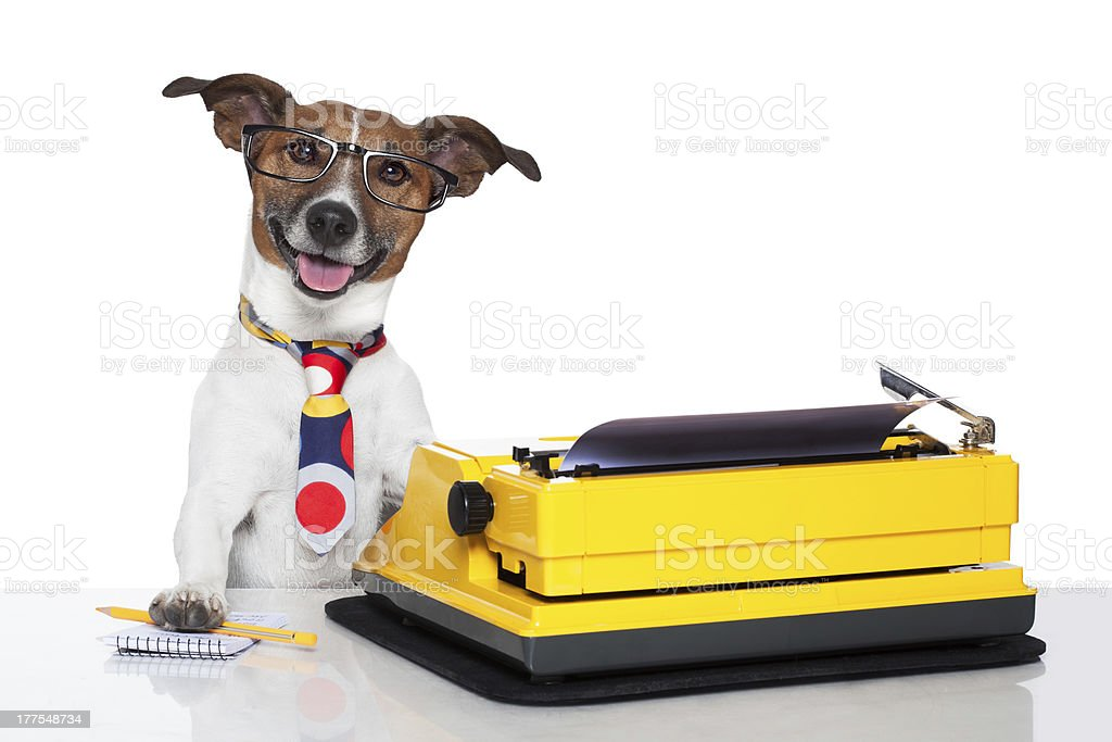 Cute business dog playing with a typewriter stock photo