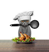 Cute cat chef is preparing chicken