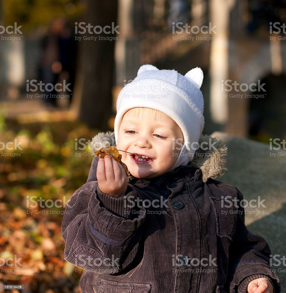 Cute child played by leaves royalty-free stock photo