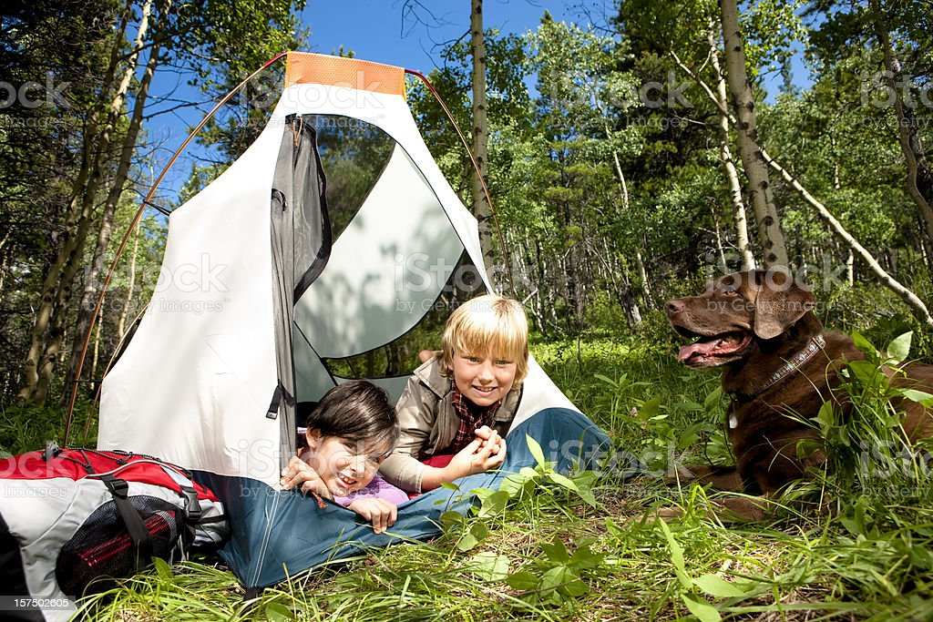 Cute Children Camping with Their Dog royalty-free stock photo