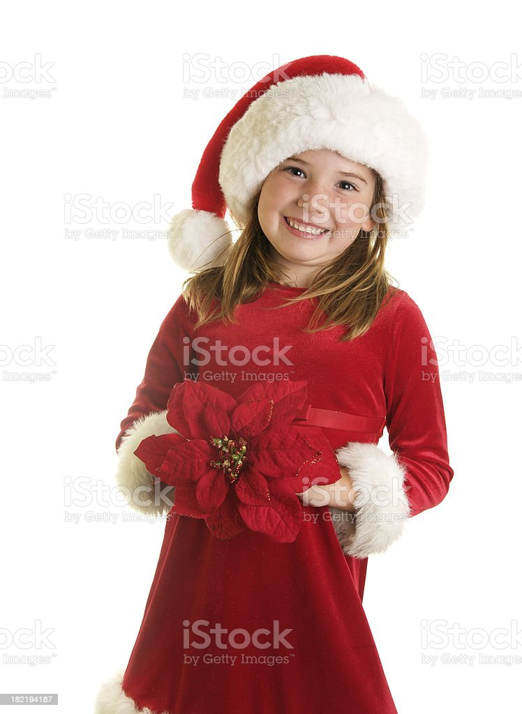 Cute Christmas Girl with Poinsettia Flower royalty-free stock photo