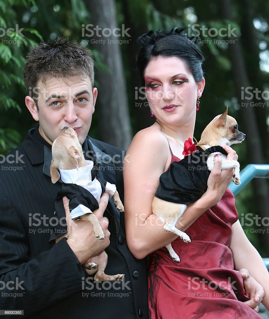 Cute couple and their 'kids' royalty-free stock photo