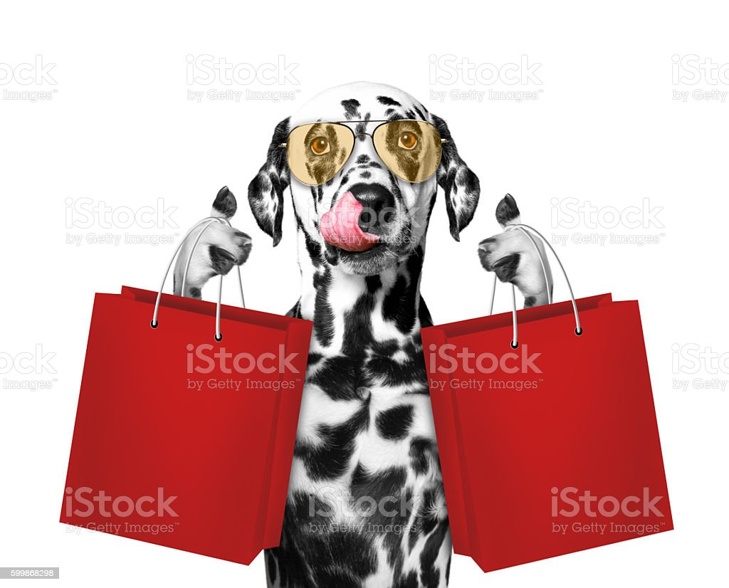 Cute dog goes shopping stock photo