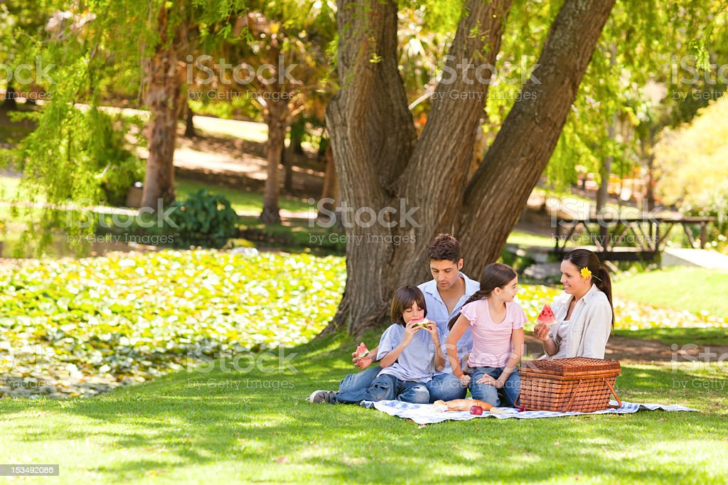 Cute family picnicking in the park stock photo