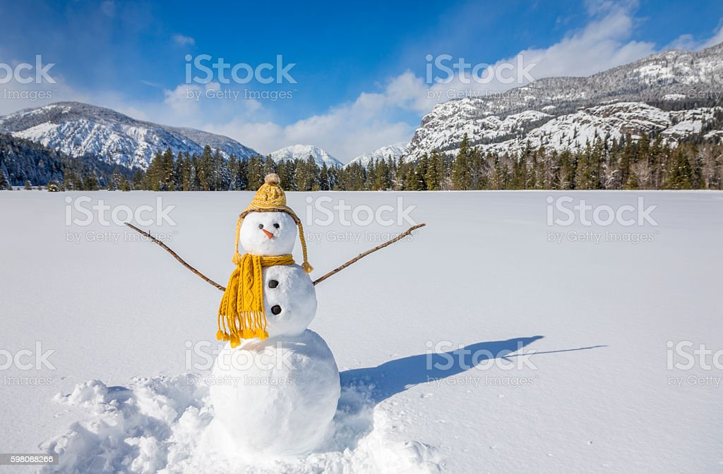 Cute fun funny snowman in snowy winter landscape scene stock photo