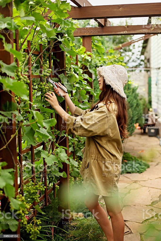 Cute girl gardener makes cutting with large garden scissors. stock photo