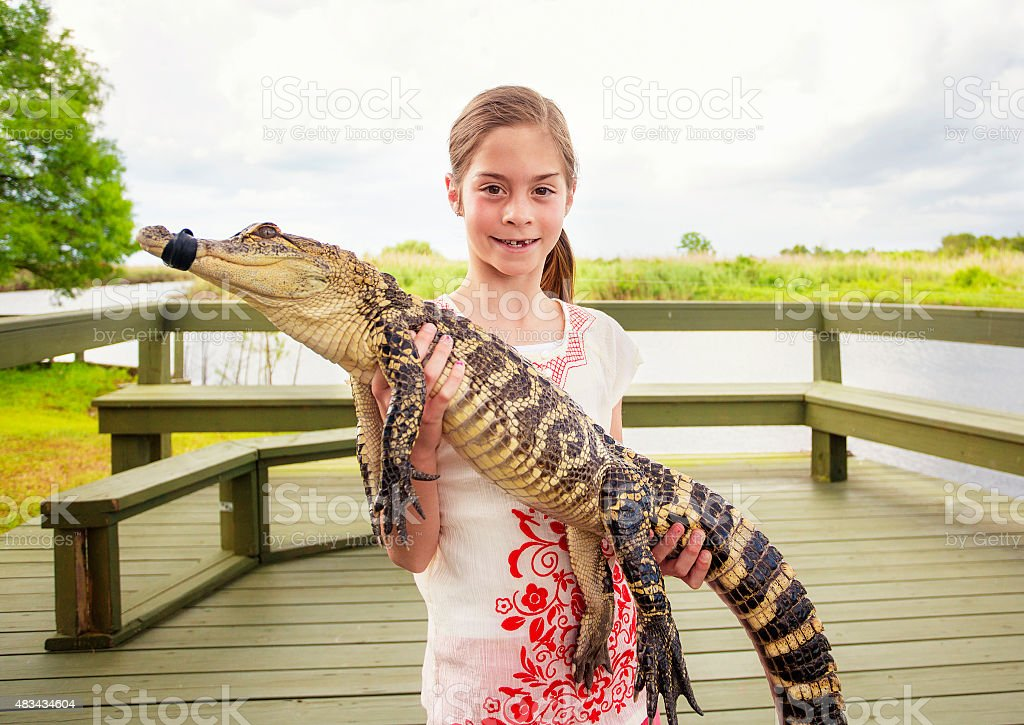 Cute girl holding a crocodile near florida everglades stock photo