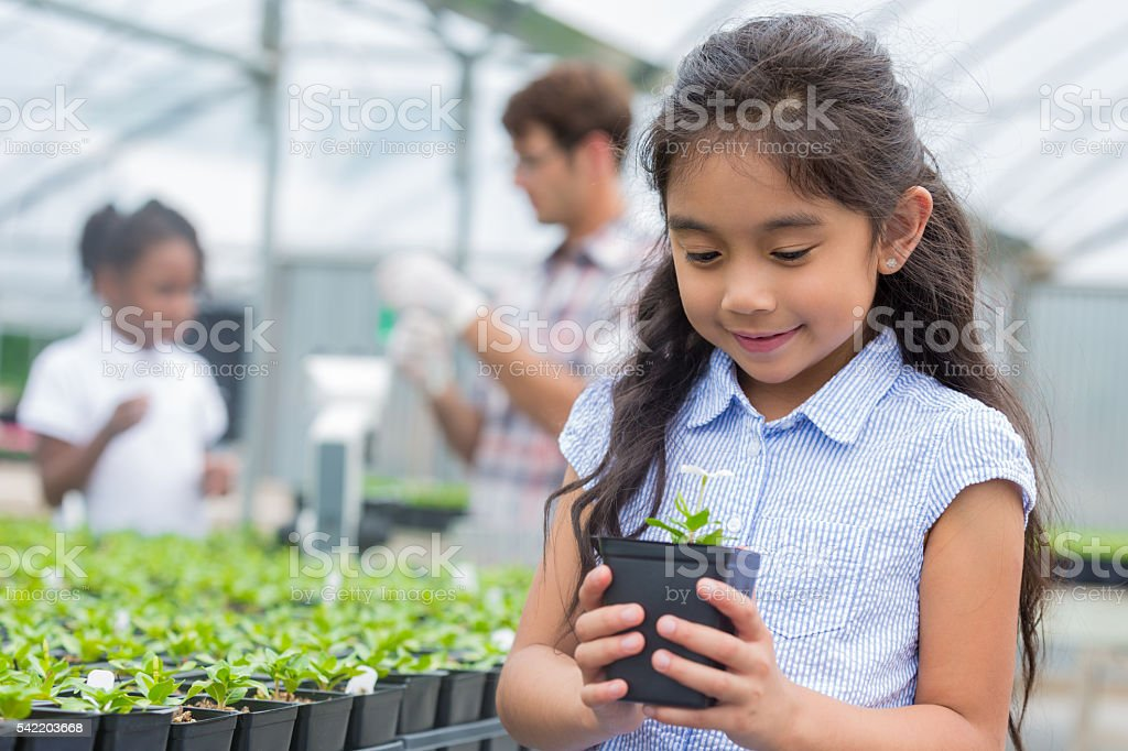 Cute girl holding flower stock photo