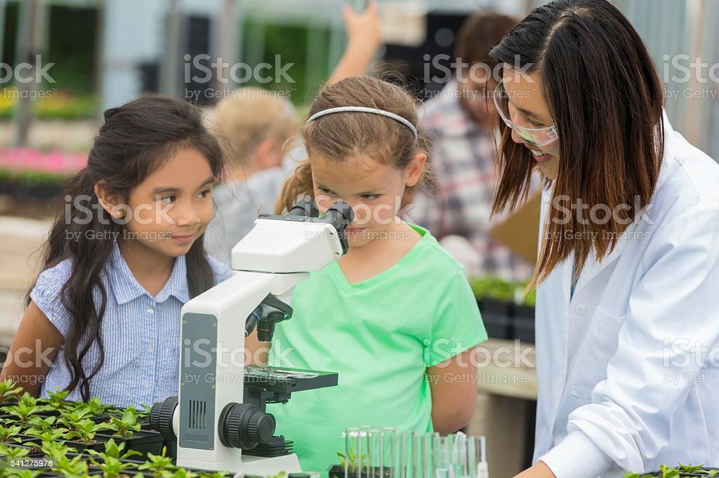 Cute girl looking into microscope during class trip stock photo