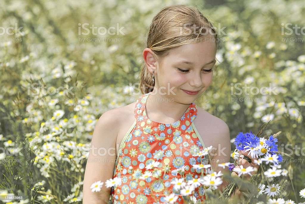 Cute girl on meadow royalty-free stock photo