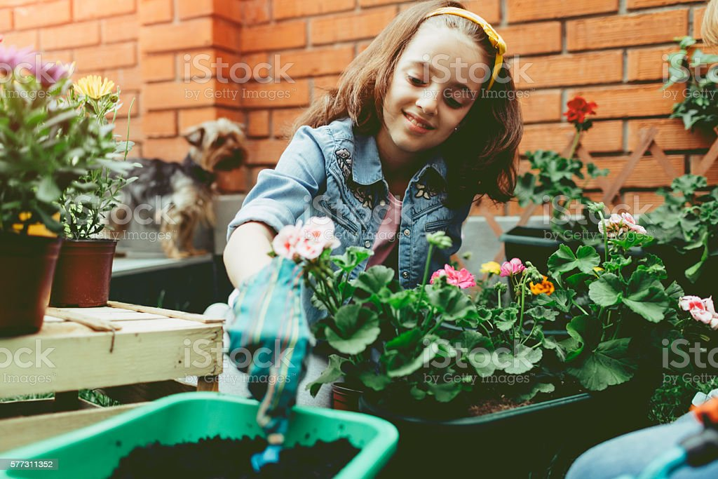 Cute Girl Planting Flowers In Her Backyard. stock photo