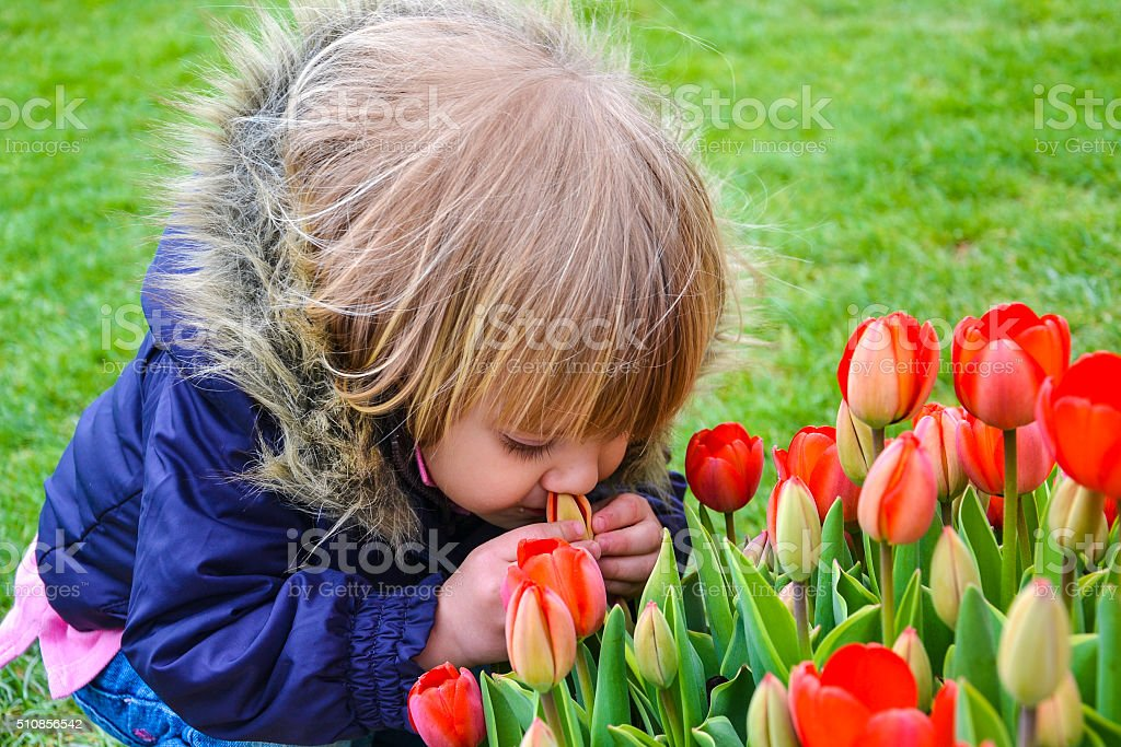Cute girl smelling flower stock photo