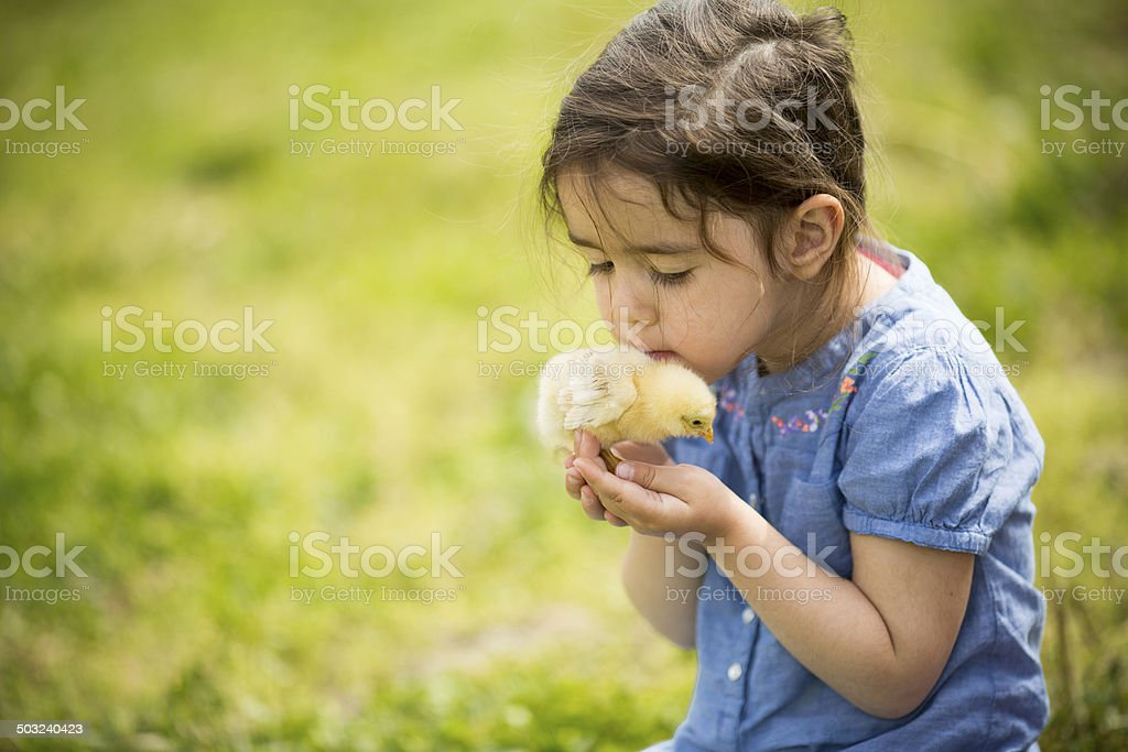 Cute girl with chicken stock photo